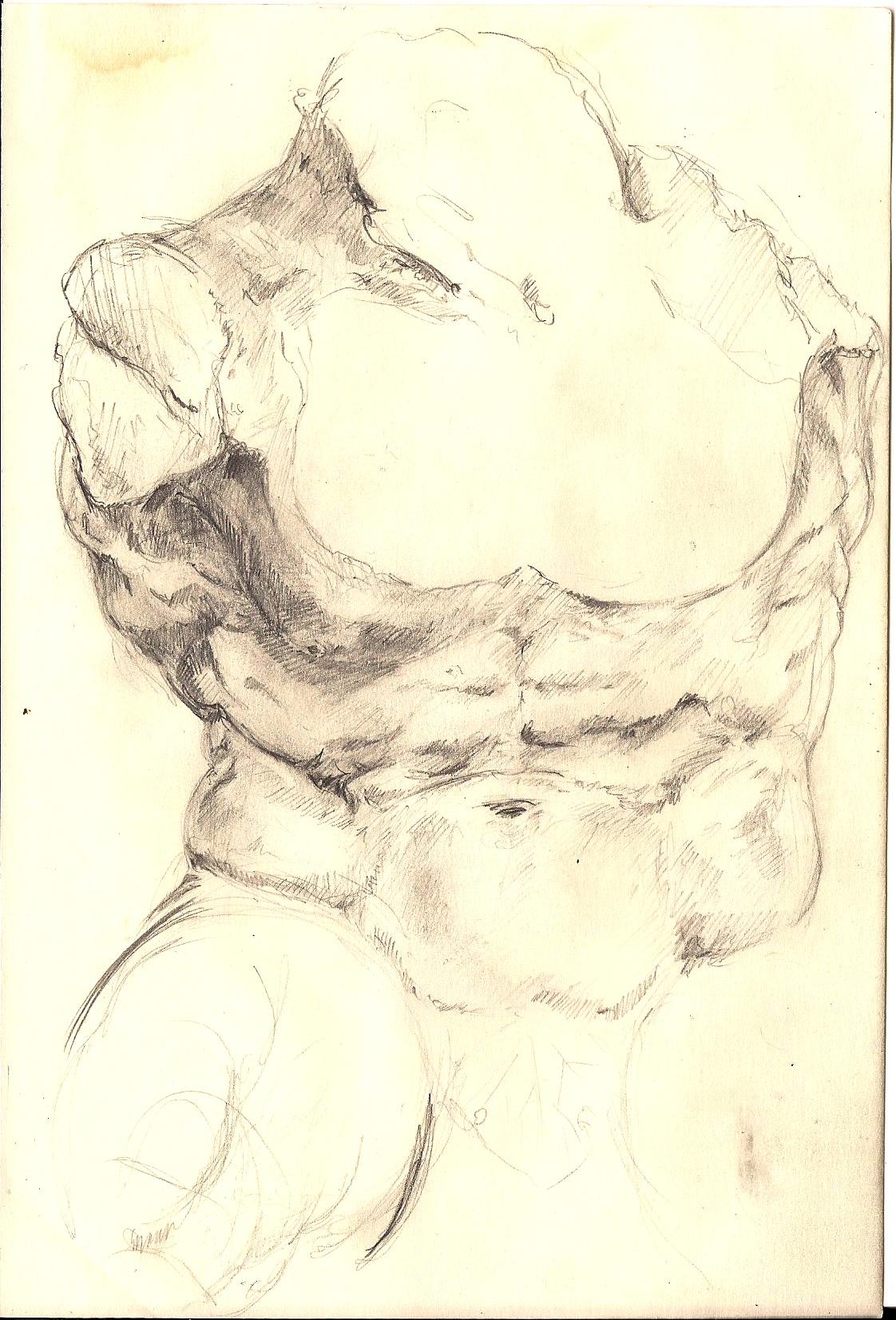 Torso Study 2005.jpg