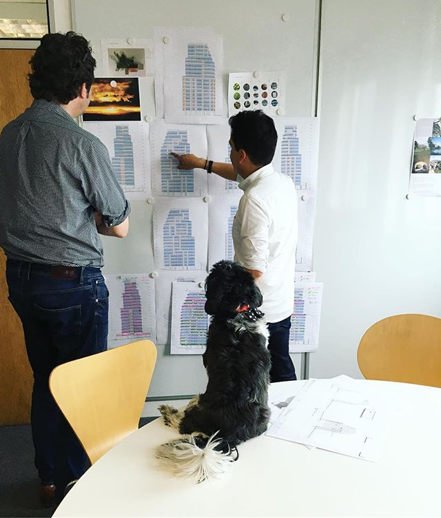 Design team reviews #boglearchitects #woof