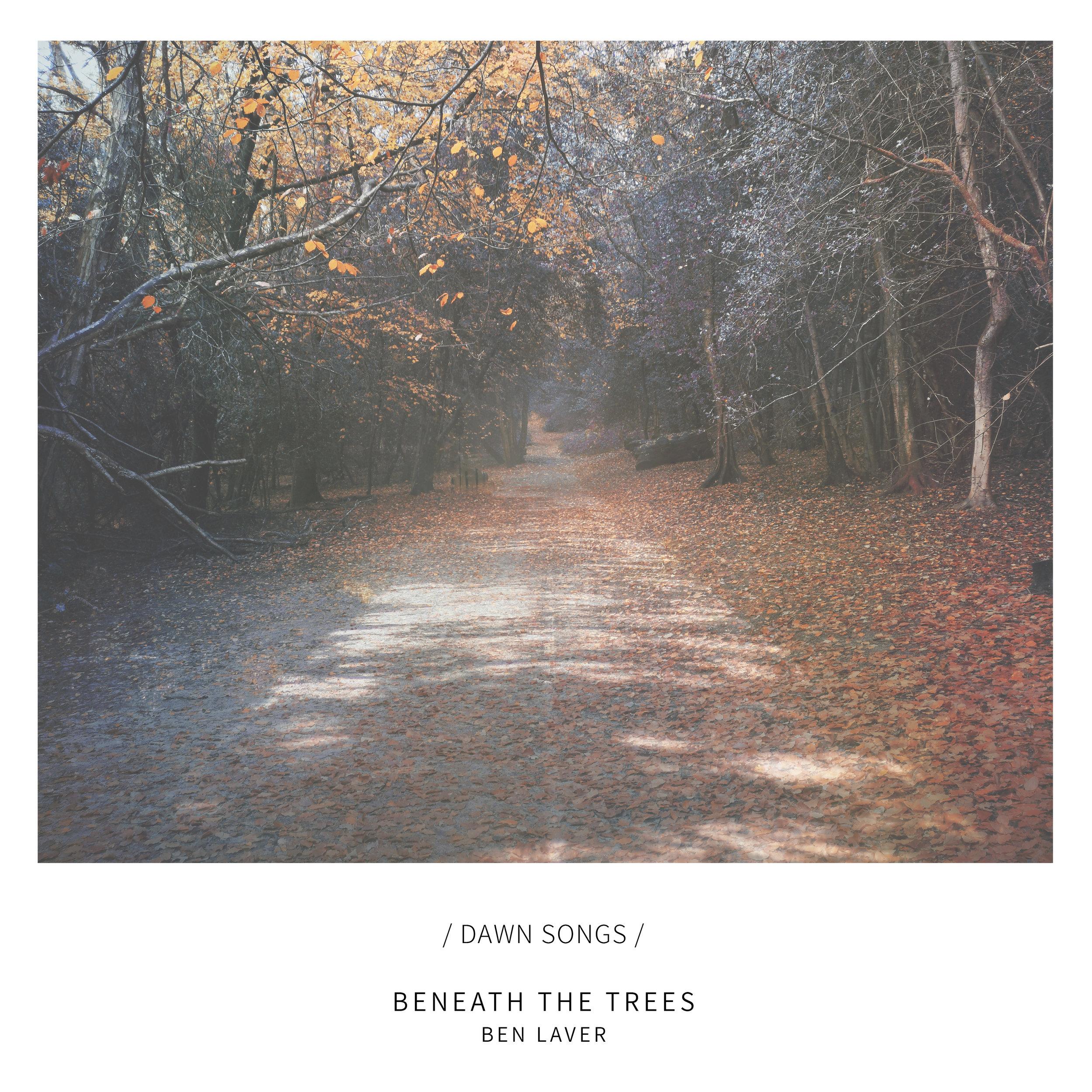 Beneath the Trees.jpg