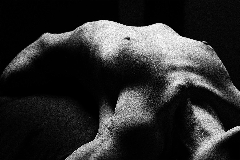 Nude Torso 16