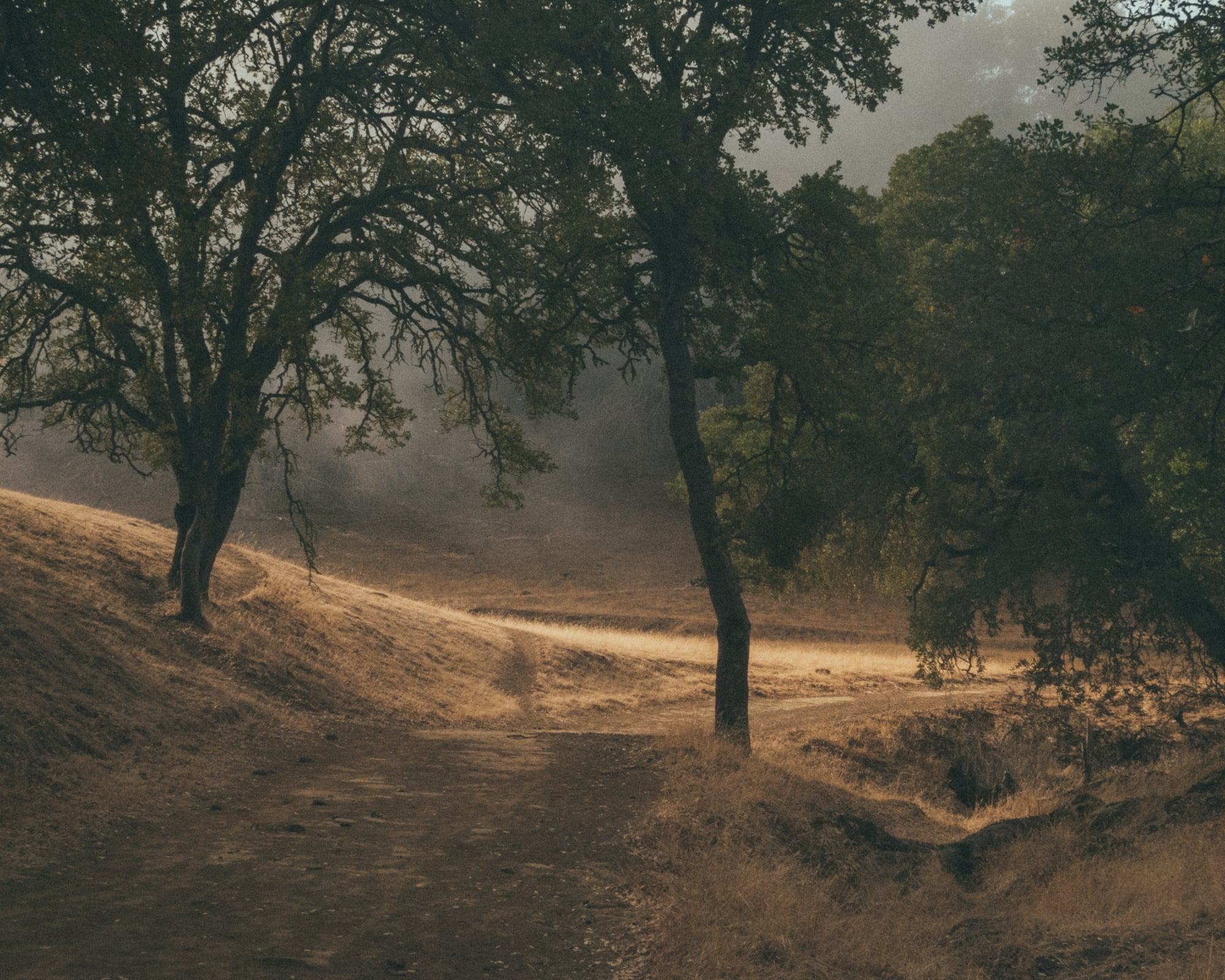 ParchedLandscapes-0173.jpg