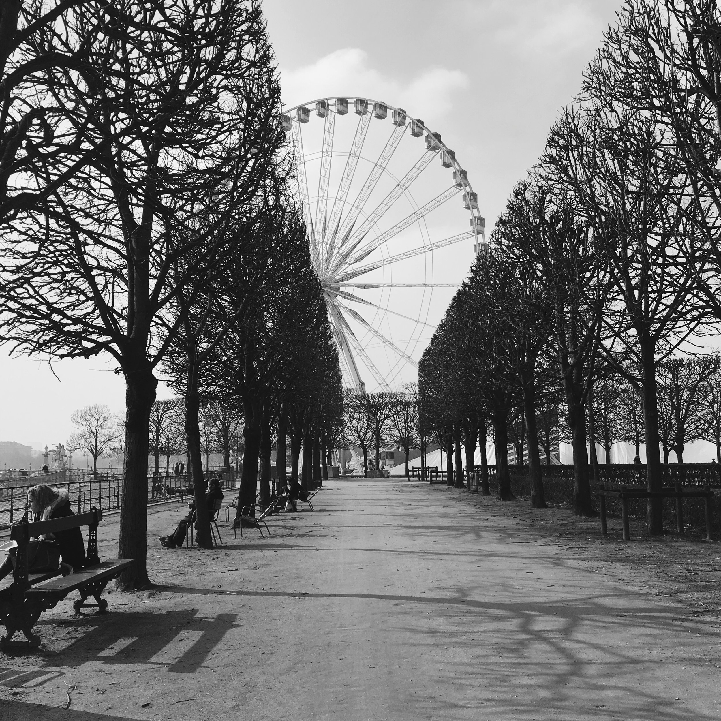 View of The Big Wheel at the Tuileries Gardens.
