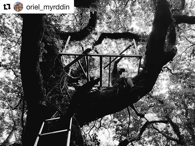 #Repost @oriel_myrddin ・・・ Six Responses: Tim Stokes. Saturday 23 February 10am - 4pm.  Six very different artists and creatives have been selected to spend one day each at Oriel Myrddin Gallery considering and responding to the ideas and aesthetics of our current exhibition The Building Project. Come along to the gallery to see what each artist/creative is doing in-situ.  Tim works as a technical creative and supports a range of diverse projects, often collaborating with other artists and designers.  His artwork has been shown across the UK and also in Venice, Rome, Germany and Brazil, it is often time-based; through the forms of animation, video and performance. In more recent work Tim has been researching and experimenting with ideas and materials that explore the body in relation to its  surrounding environment - considering survival, play and interaction.  Tim teaches on the Foundation Art and Design course at Swansea College of Art (UWTSD) and also lectures across several other degree courses. Outside of this Tim also supports a range of Community and Heritage engaged projects, and also supports Mission Gallery in Swansea.  Tim has three themes underpinning his response to The Building Project: Alchemy, Growth and Flux.  @timstokesuk @freshwestdesign #thebuildingproject #plastercasting #sixresponses