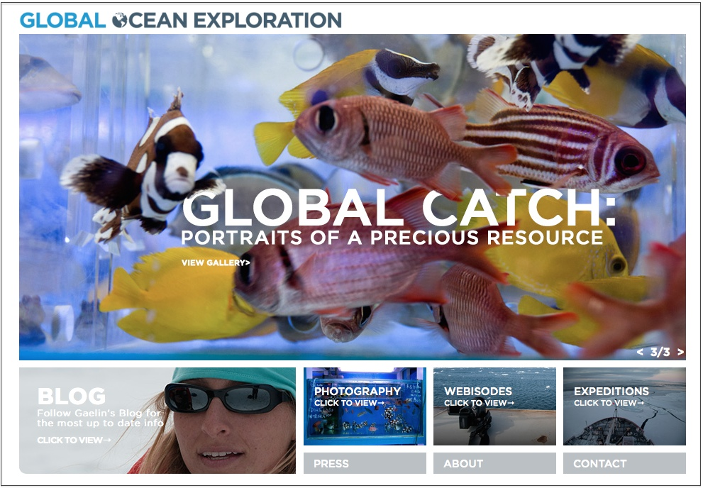 Click to visit globaloceanexploration.com and learn about Gaelin's expedition work with her company, Global Ocean Exploration Inc.