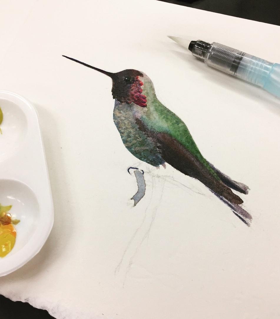 Hummingbird Demo