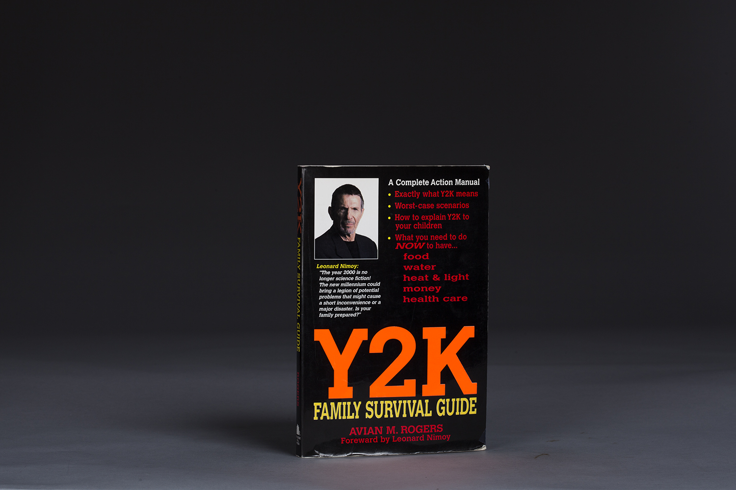 Y2K Family Survival Guide - 0788 Cover.jpg