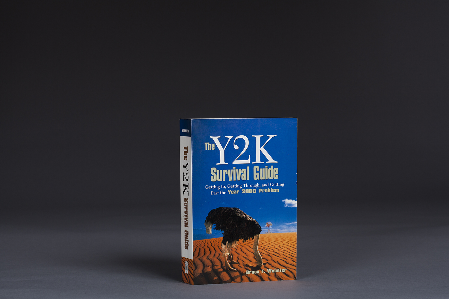 The Y2K Survival Guide - 0166 Cover.jpg