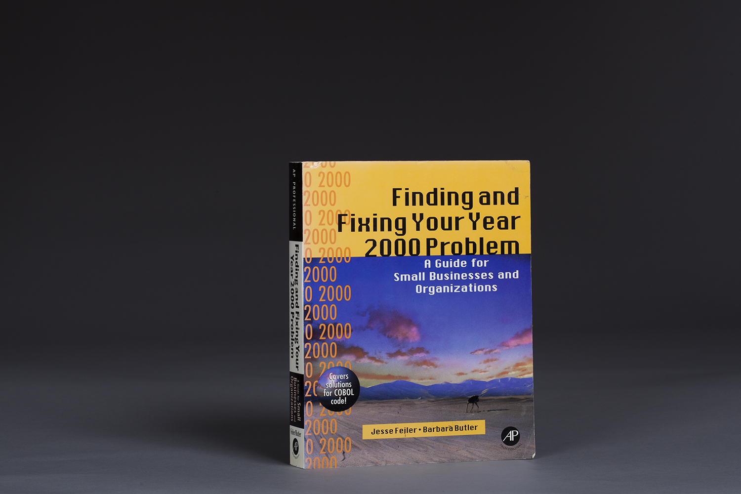 Finding and Fixing Your Year 2000 Problem - 0101 Cover.jpg