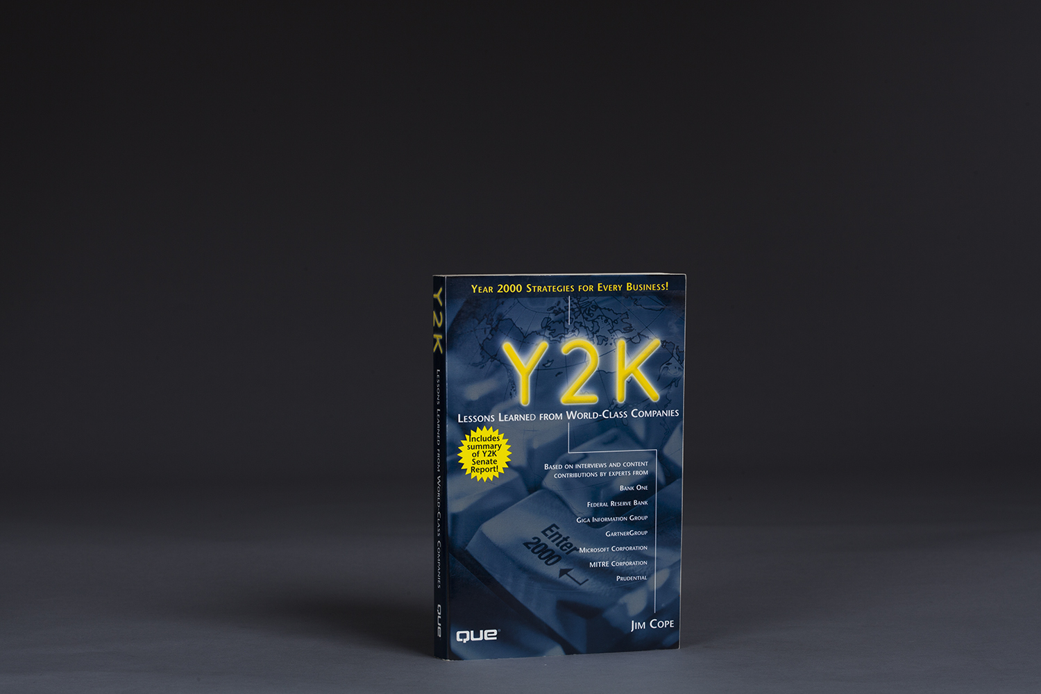 Y2K Lessons Learned from World Class Companies - 0529 Cover.jpg