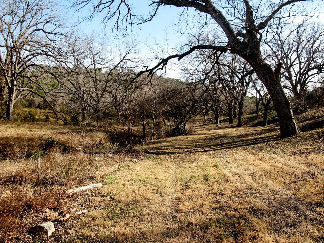 DGordin_090000_Texas_CFRanch_0019.jpg