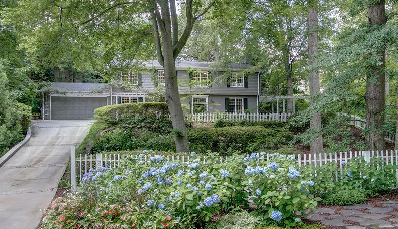 Hydrangeas in front of house