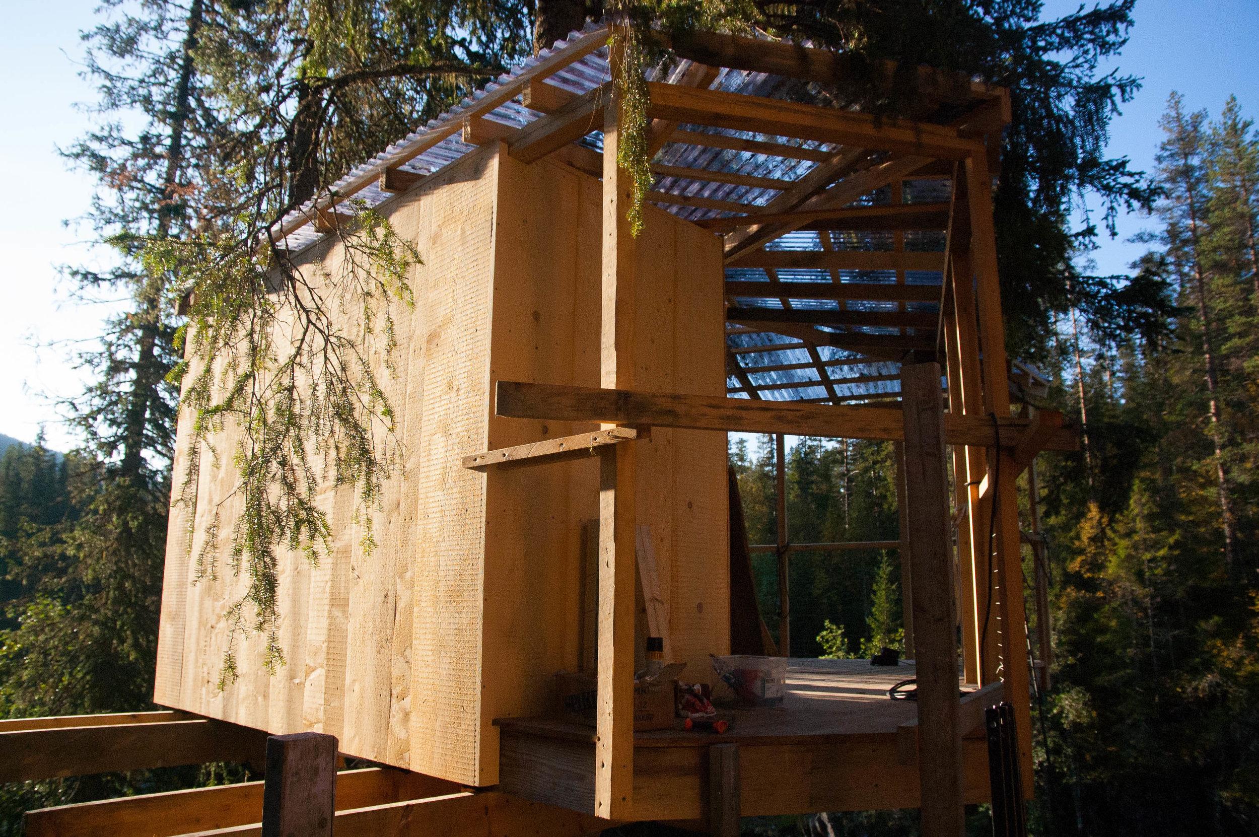 Treehouse 10.09 (3 of 12).jpg