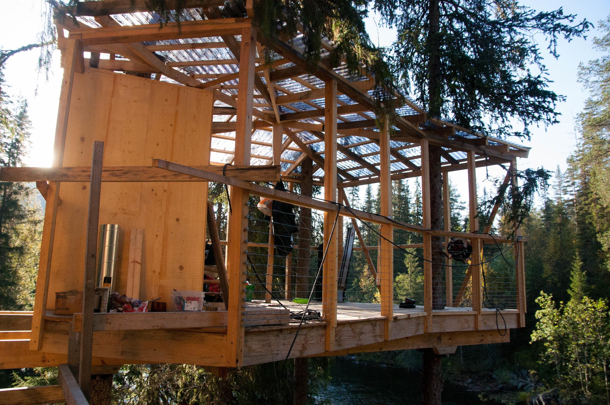 Treehouse 10.09 (5 of 12).jpg