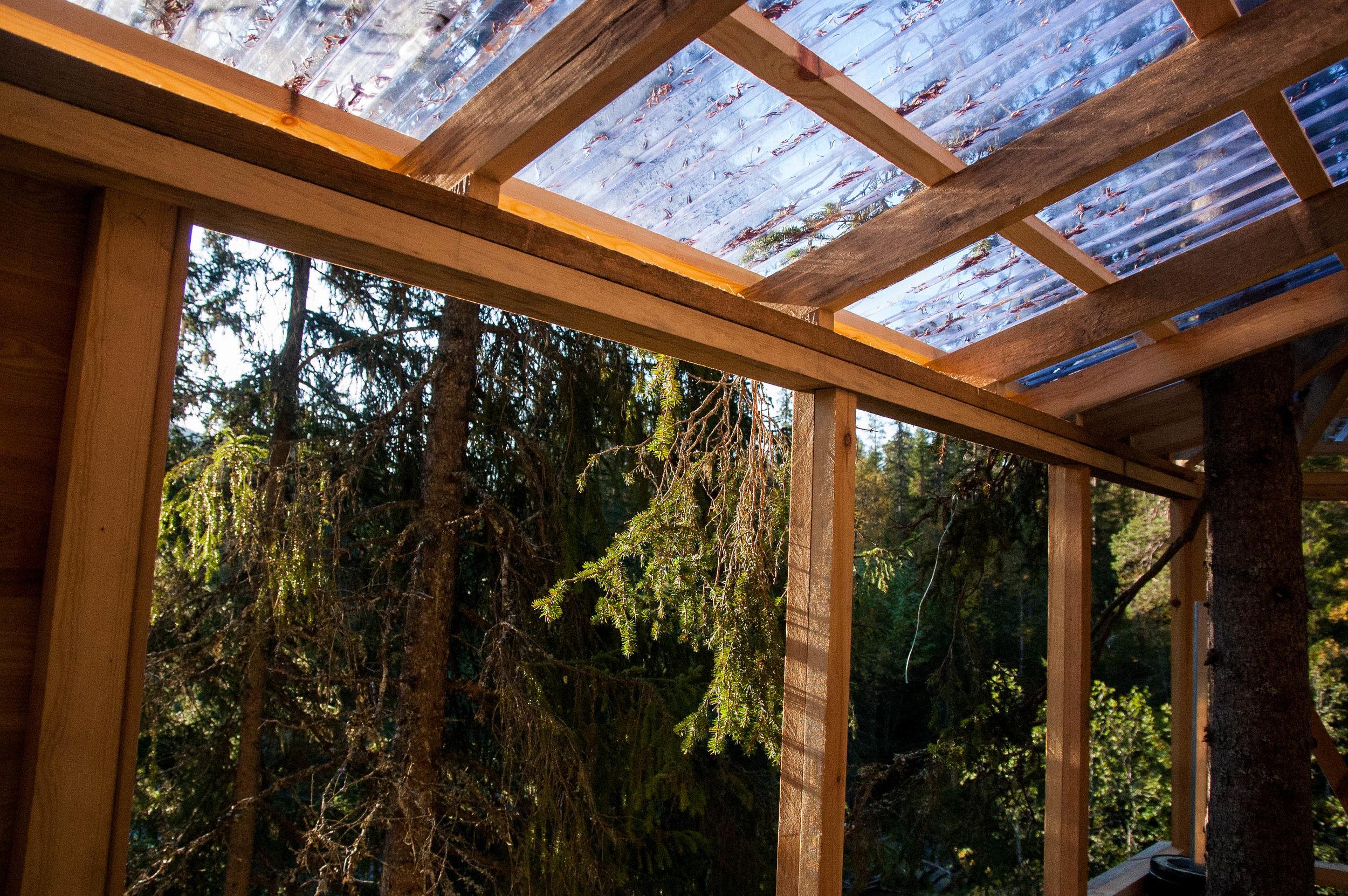Treehouse 10.09 (7 of 12).jpg