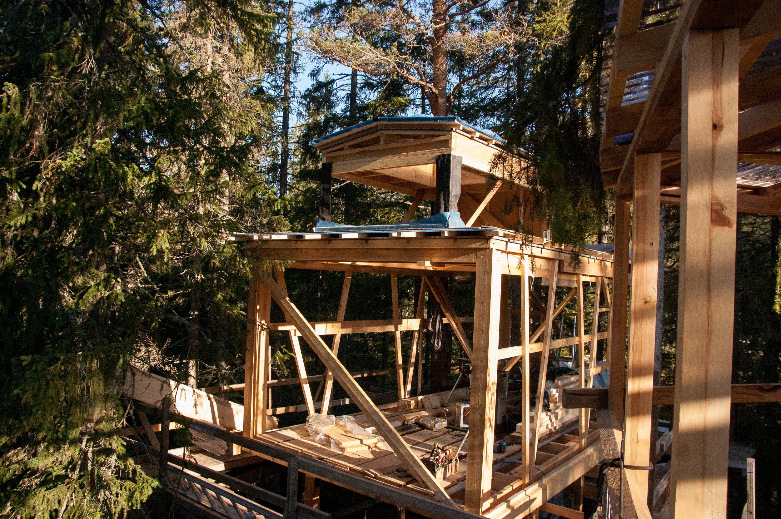 Treehouse 10.09 (9 of 12).jpg