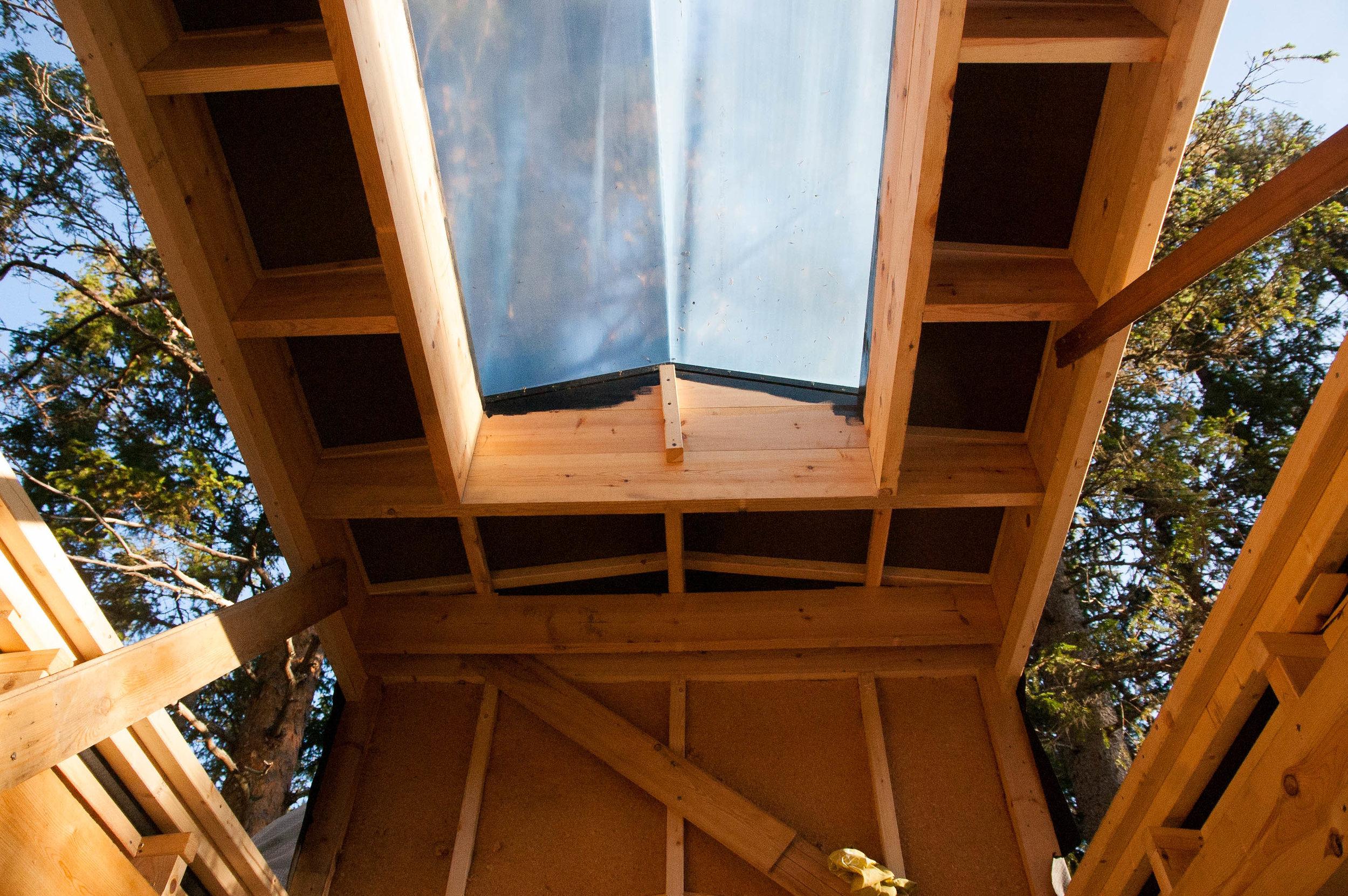 Treehouse 10.09 (11 of 12).jpg