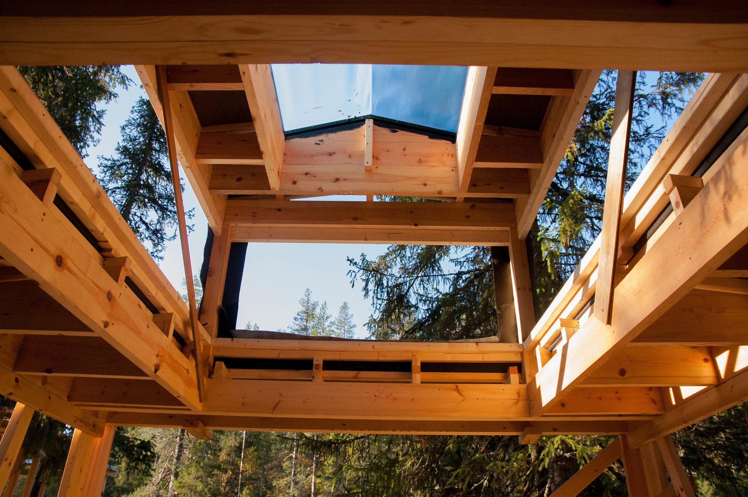 Treehouse 10.09 (12 of 12).jpg