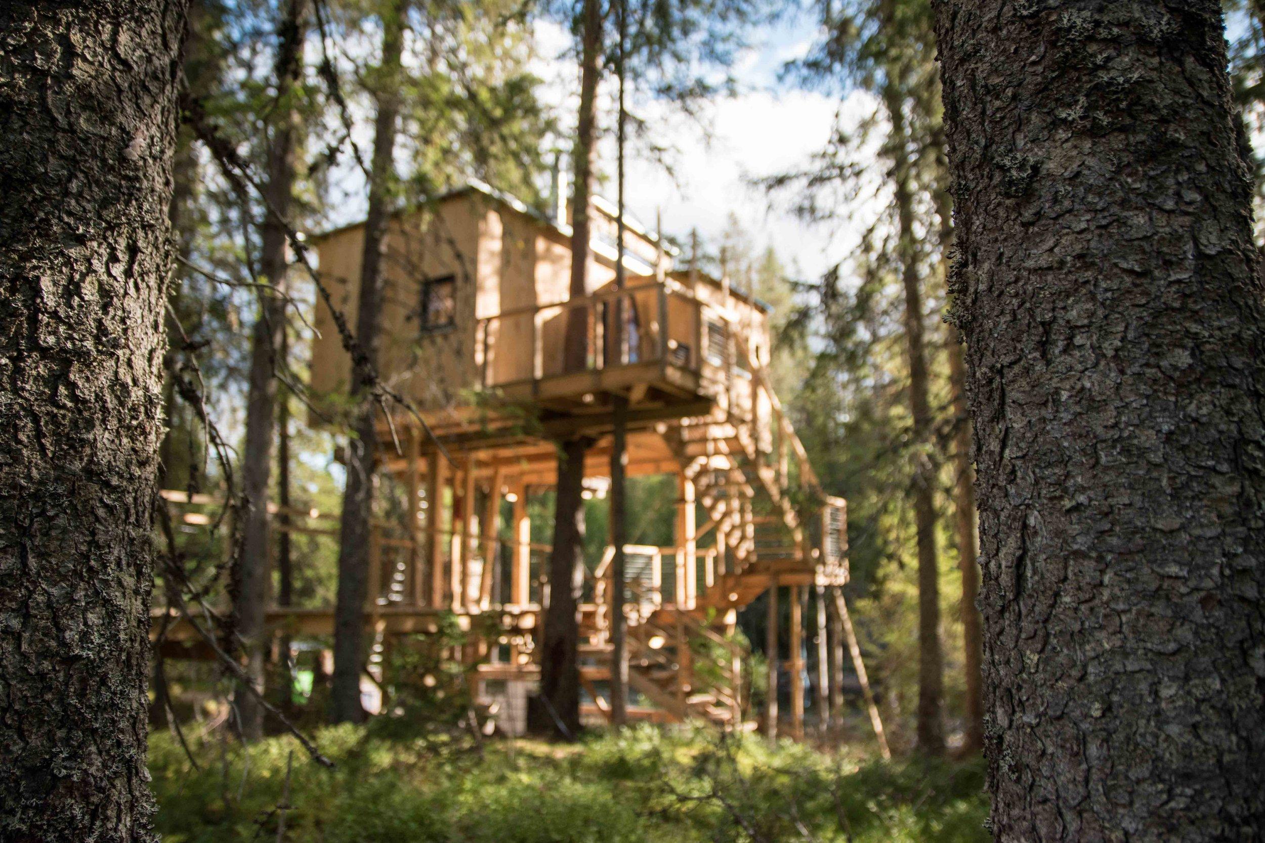 Treehouse exterior-4.jpg