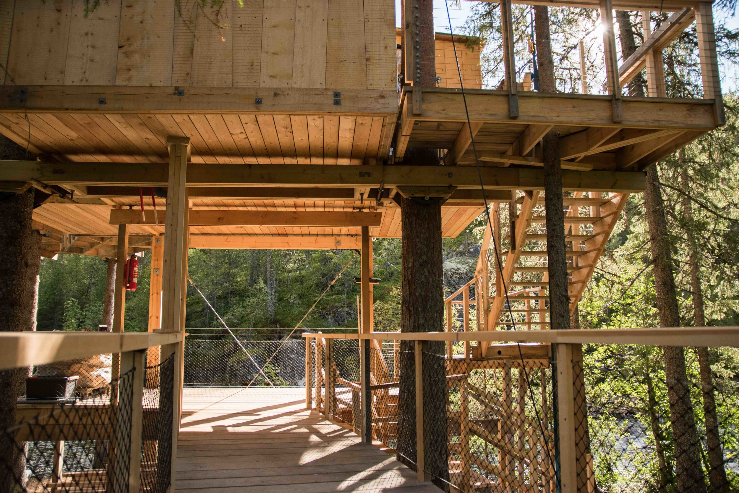 Treehouse exterior-24.jpg