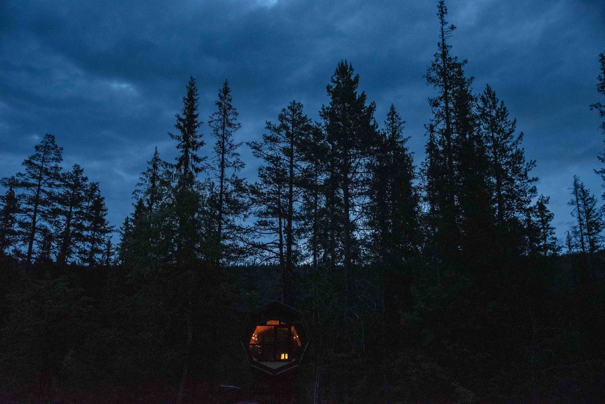 auree night (6 of 7).jpg