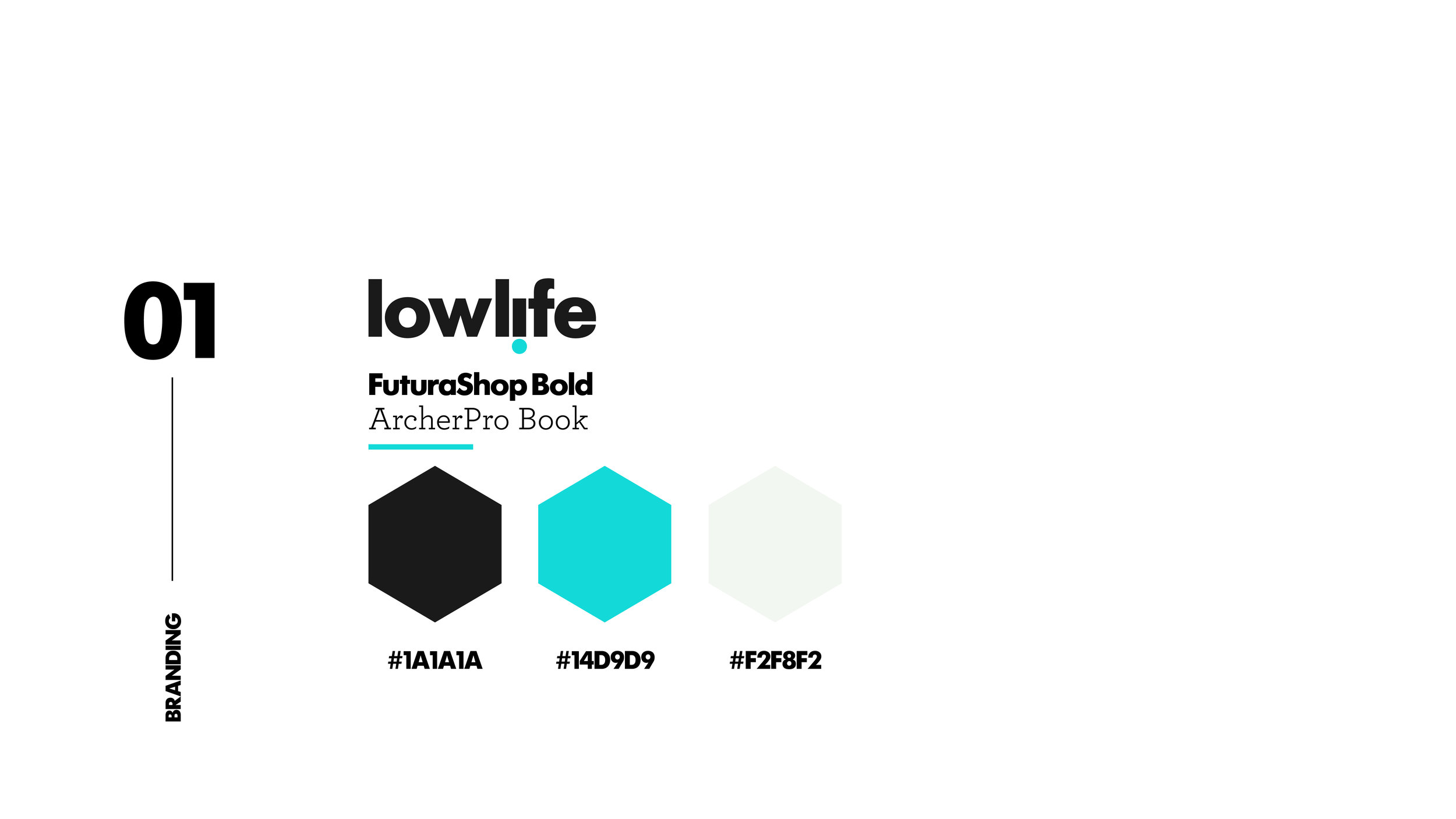 LOWLIFE_BrandColorsLayout.jpg