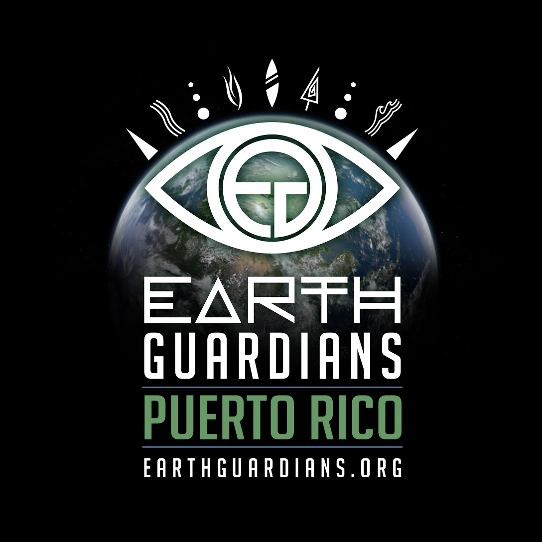 EG_Crew_Puerto Rico.jpg