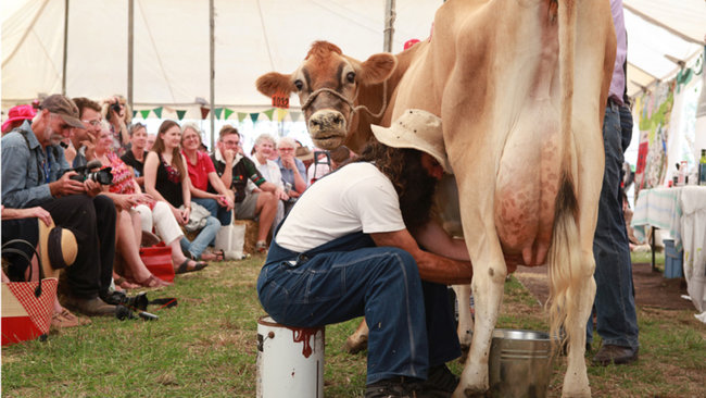 Image credit: Felton Food Festival