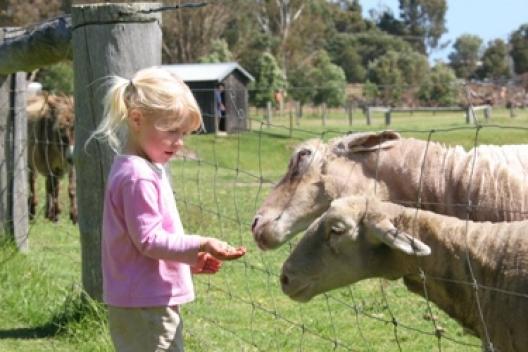 Image credit: BIG4 Taunton Farm
