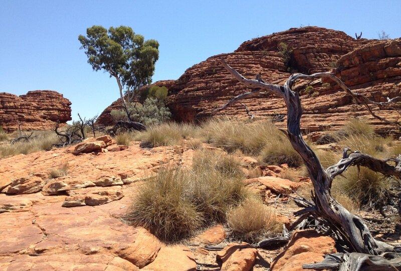 Tourism in outback australia.jpg