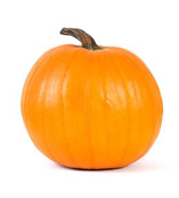 sugar-pie-pumpkin-lg.jpg