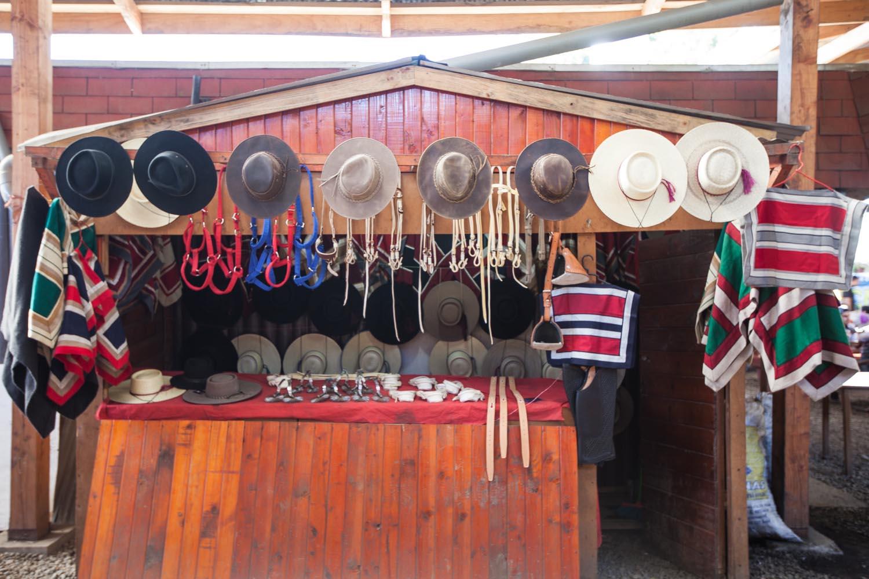 Market in Valdivia, Chile