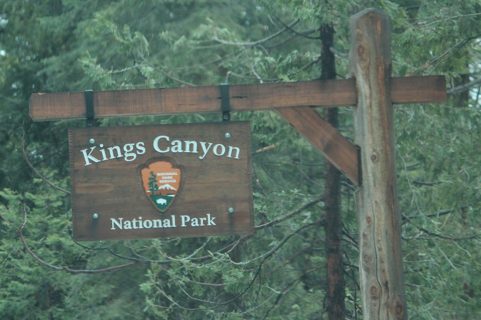 Exploring King's Canyon and Sequoia National Parks as a family.