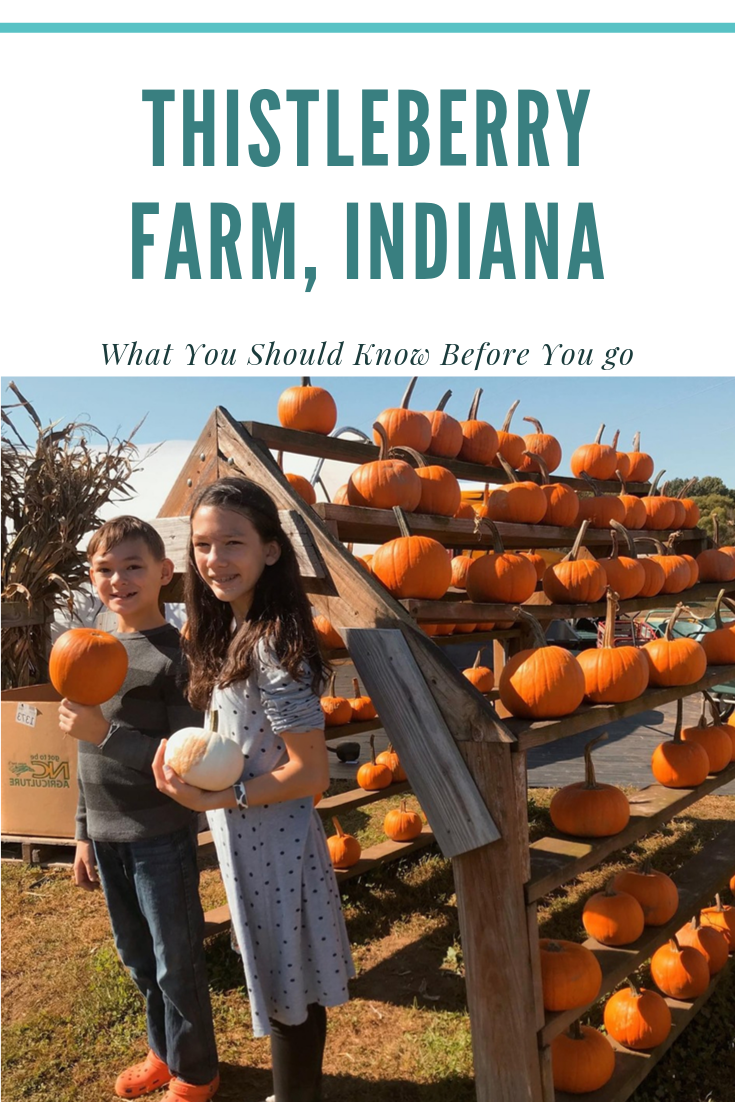 What you should know before you visit Thistleberry Farm, South Bend, Indiana