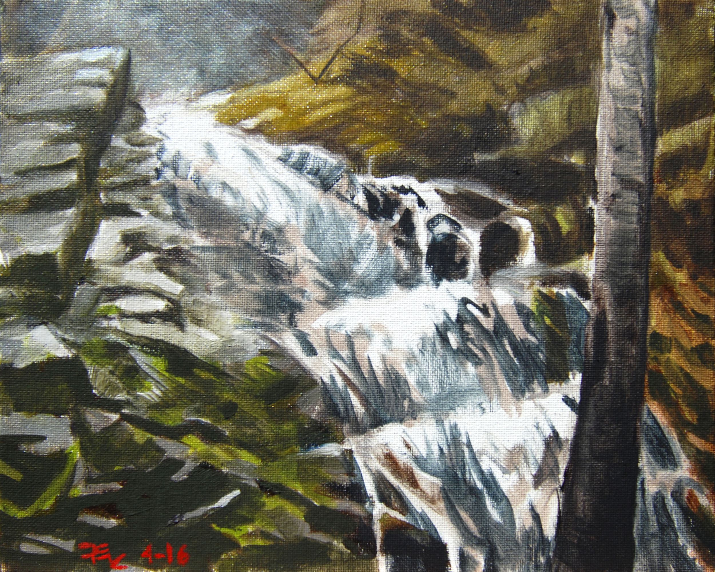 Lower Whiskeytown Falls , 8 x 10 in.  Oil on canvas. Available for purchase. (2016)