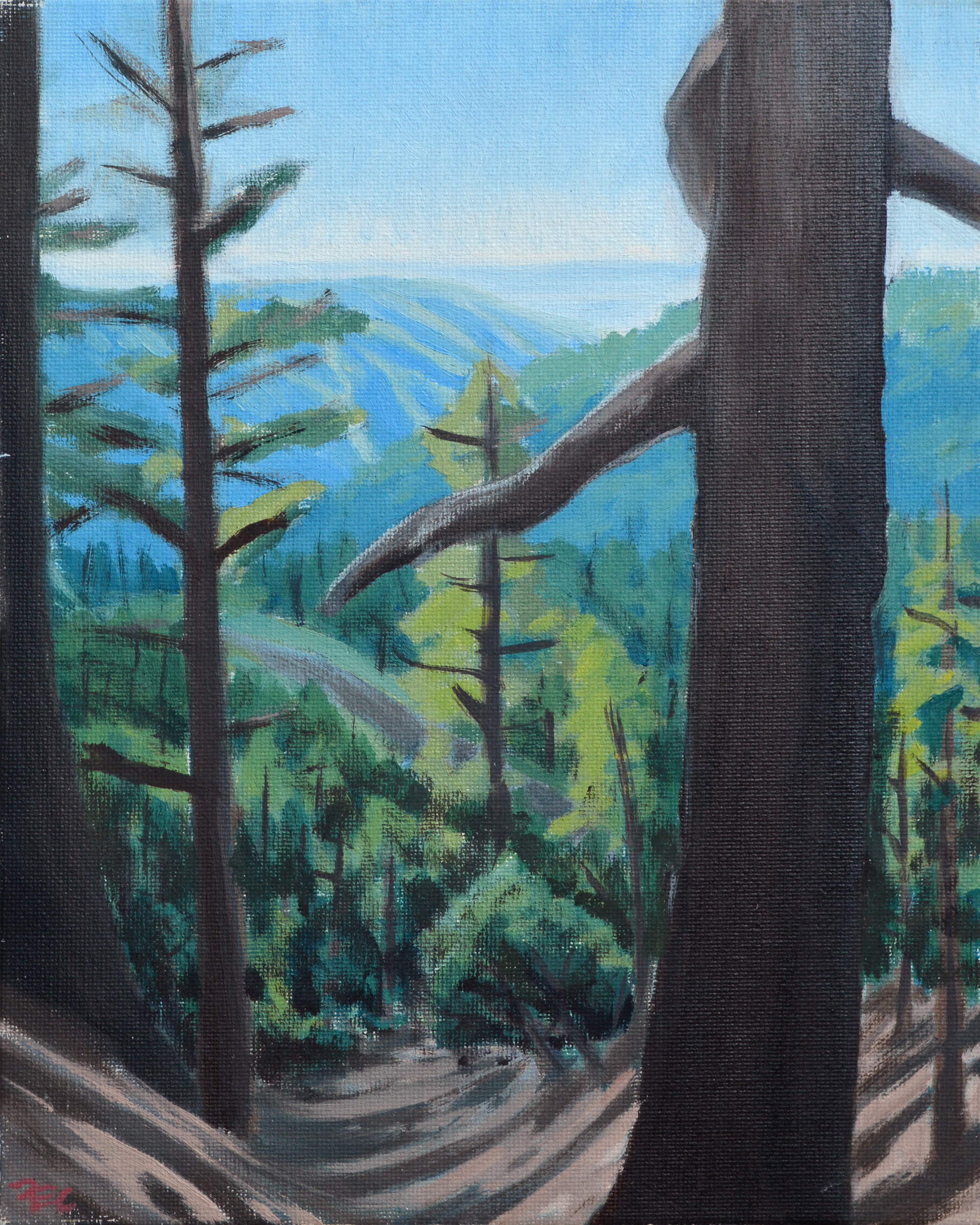 Burnt Pines , 10 x 8 in.  Oil on canvas. Available for purchase. (2017)