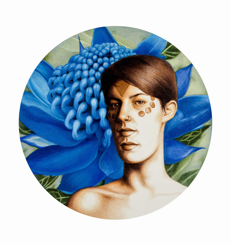 Ruby Chew, Blue Waratah, 37 x 37 cm, Coloured Pencil On Paper, 2016