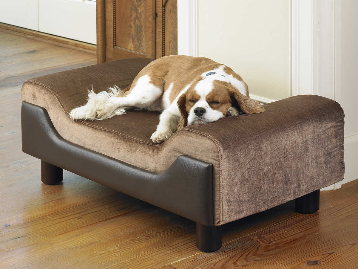 Pet dog bed product photographer.jpg