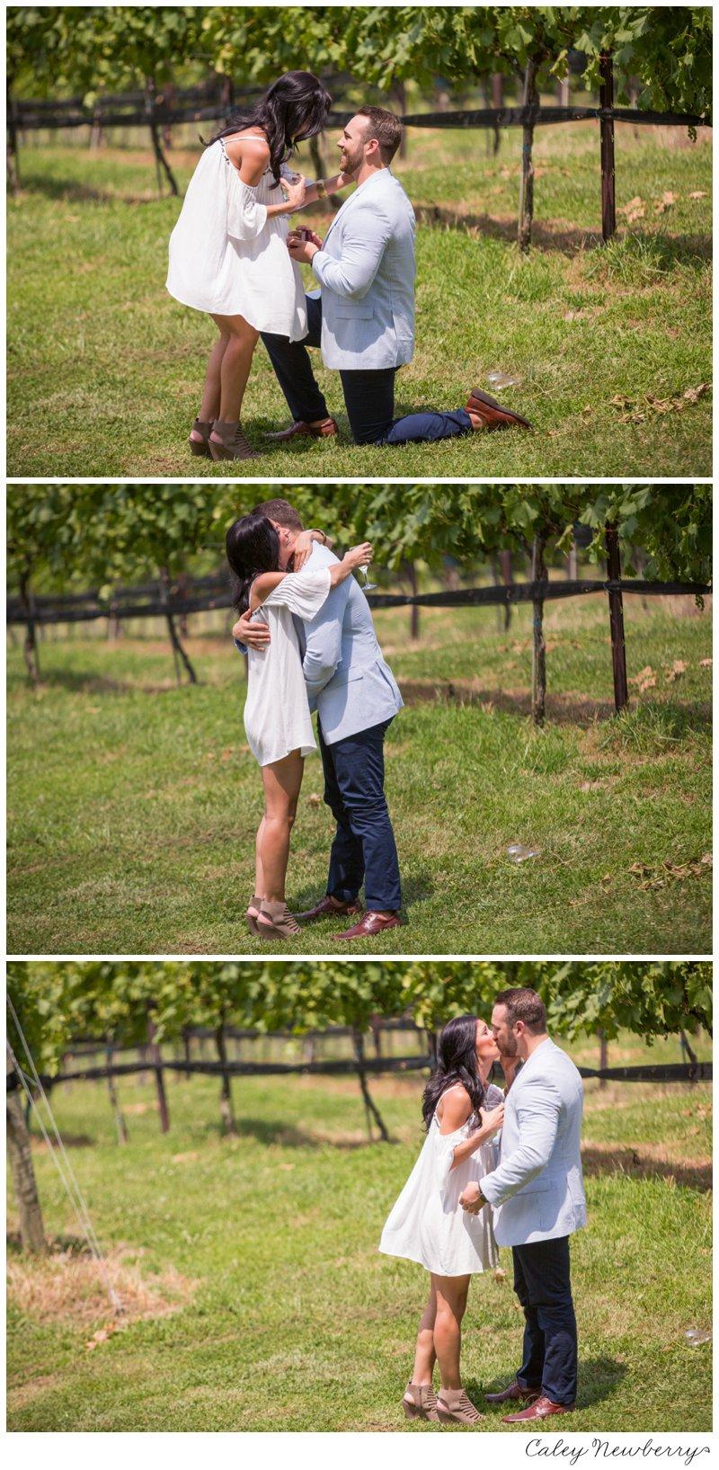 arrington-vineyards-nashville-tn.jpg