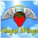 bocavapes-angel wings-tmb.JPG