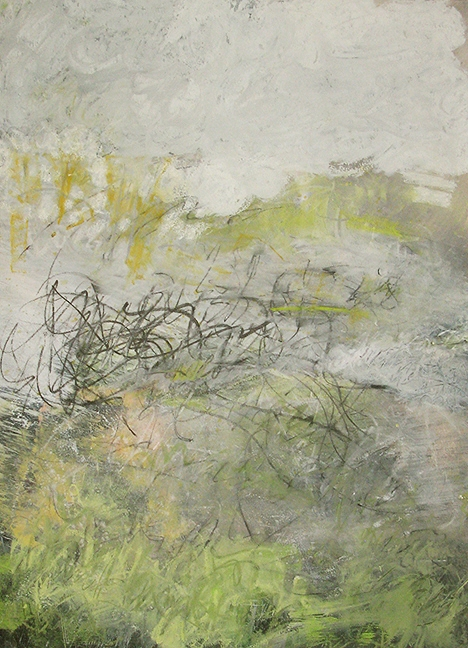 "acid rain, 2012, graphite, pastel, and acrylic on paper, 19 x 26"""