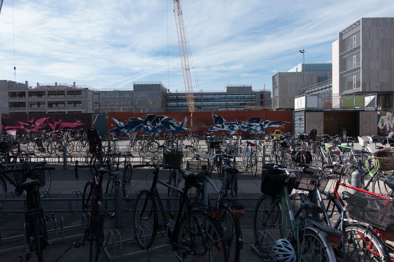 Copenhagen Residency-129.jpg