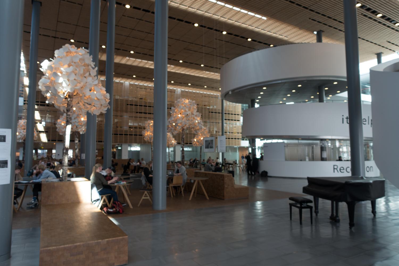 Copenhagen Residency-122.jpg