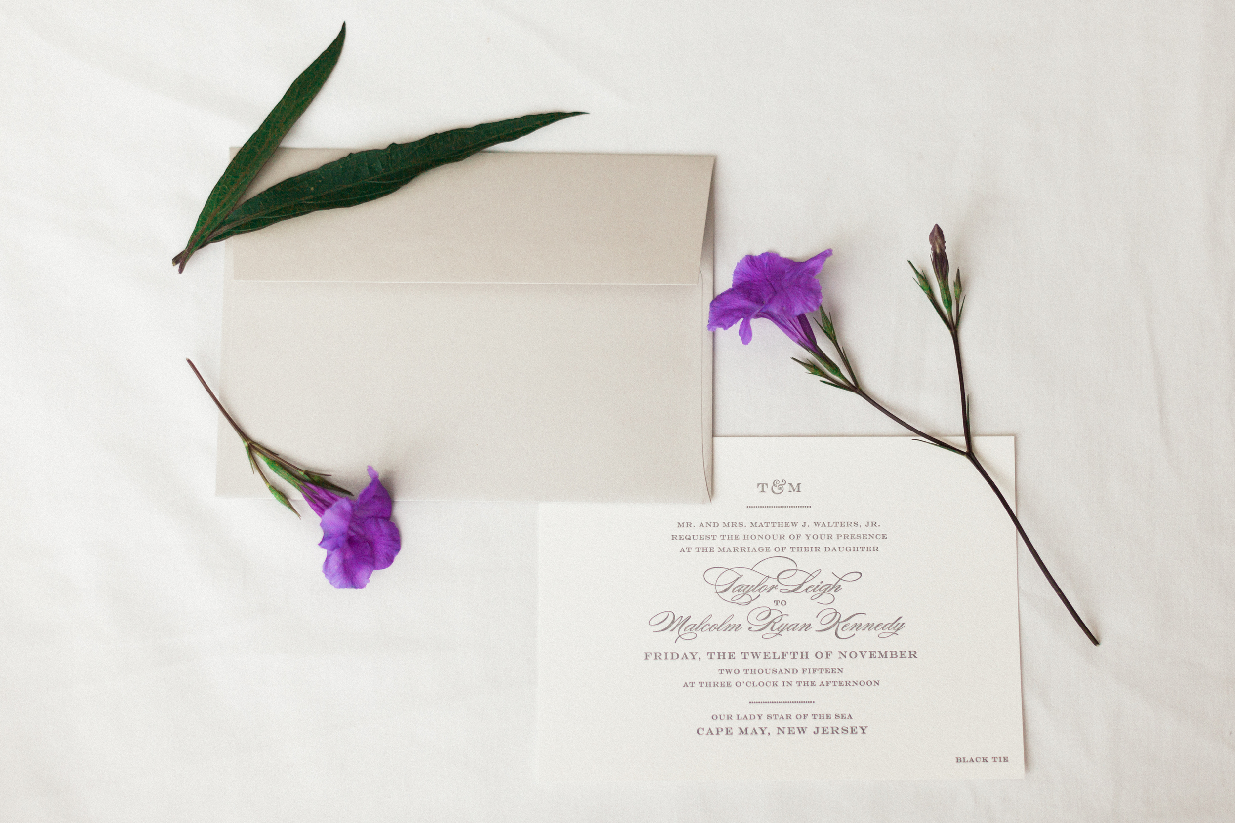 Minted Charming Go Lightly | Michelle Mock Photography