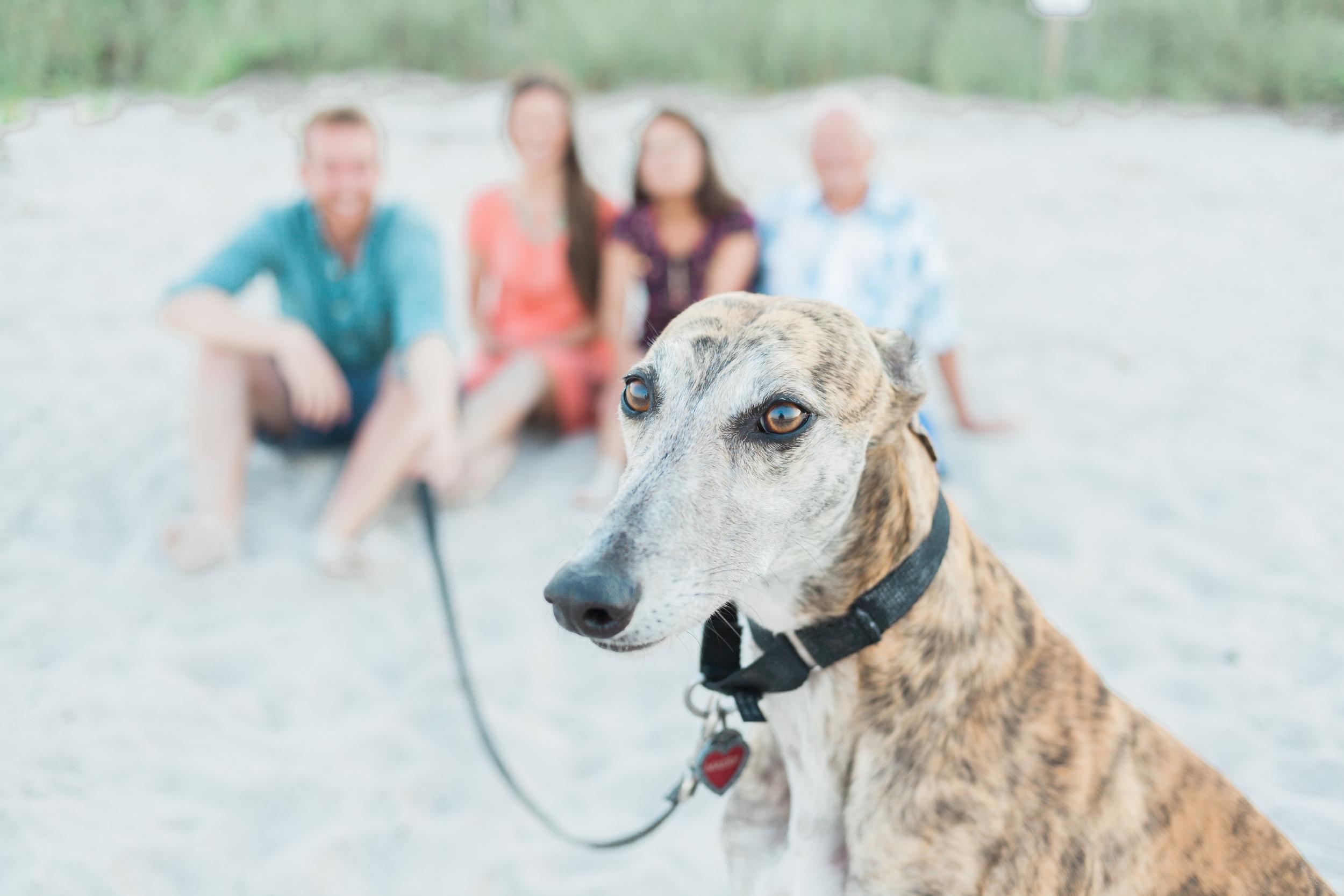 Family Seaside Photo Session | Satellite Beach, FL | Michelle Mock Photography