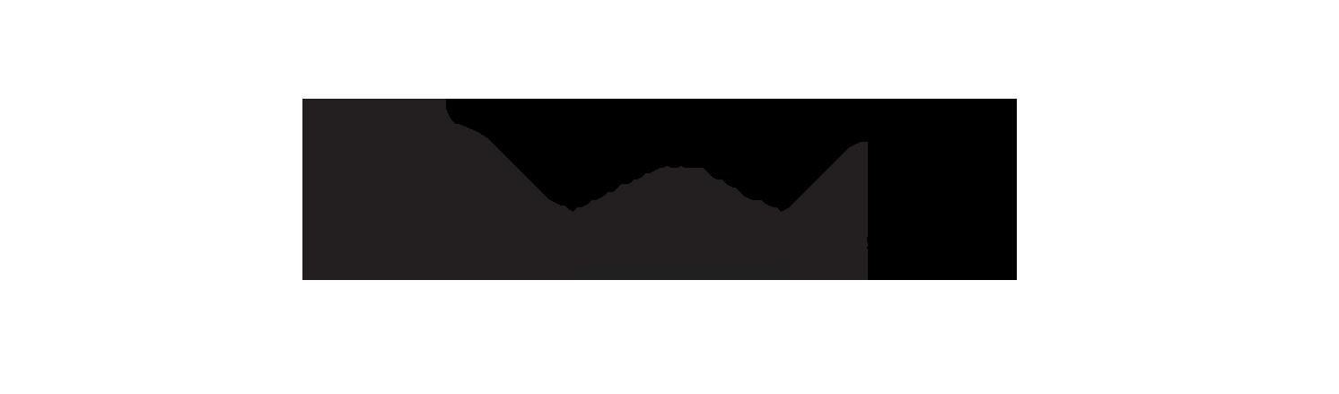 zetta portfolio 2.png