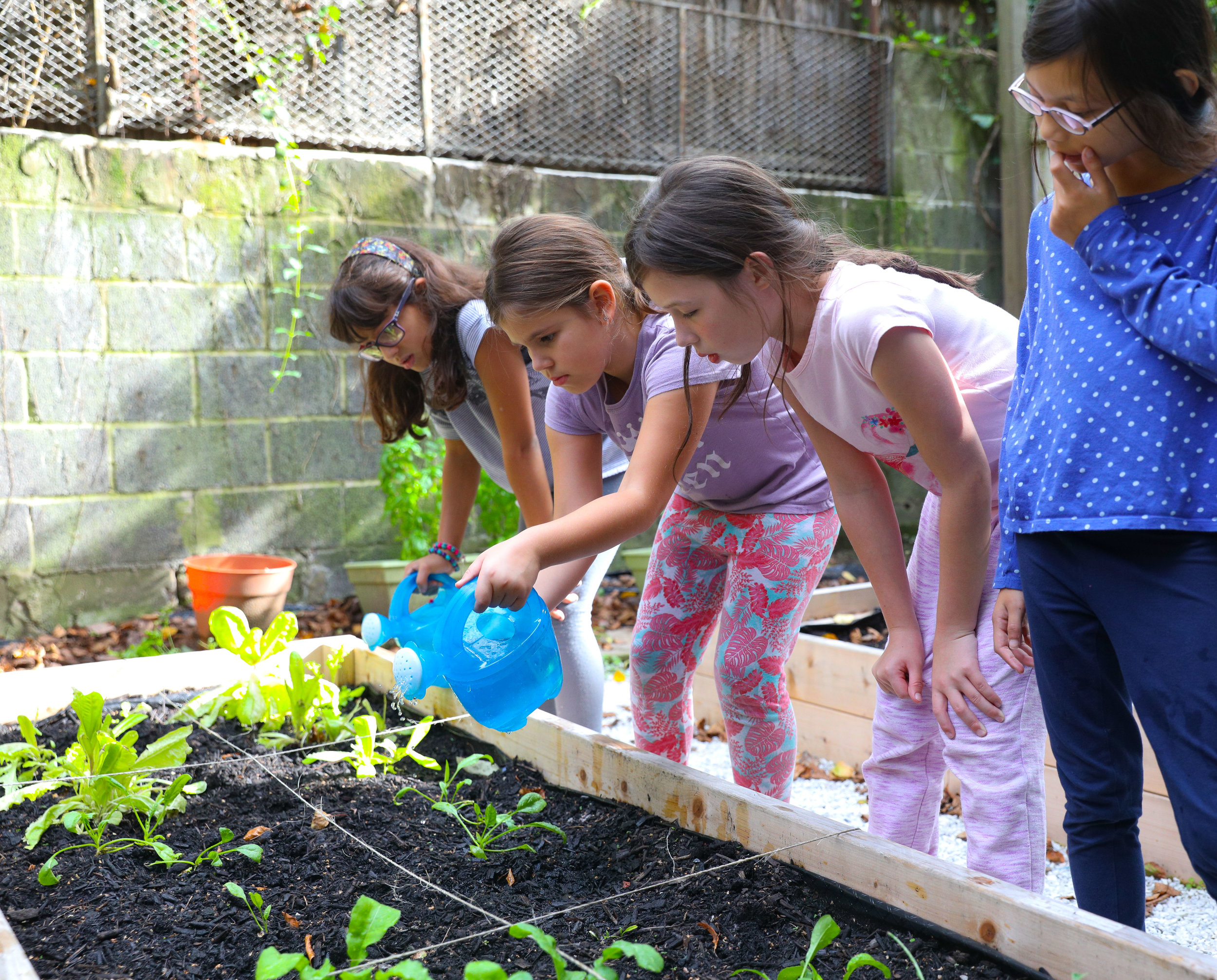 After School 9-27_10 gardening.jpg