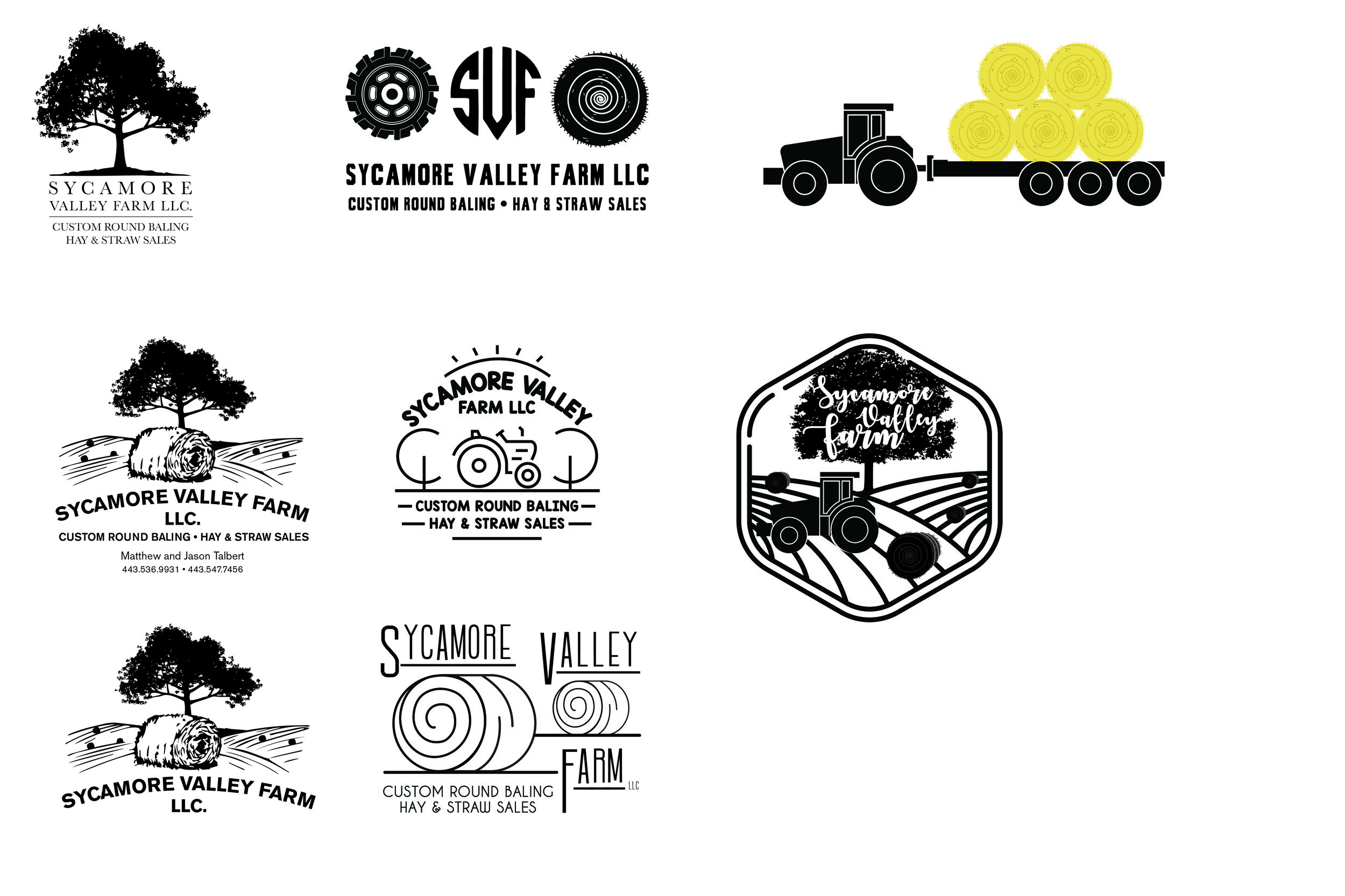 Logo options that I presented the client with.