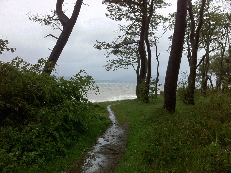 Wet and wild Ardgowan Forest-2-ColinJCampbell