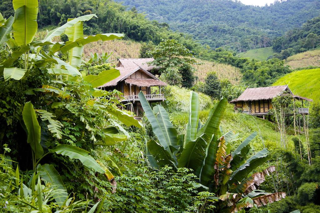 The 'Bamboo Nest', Chiang Rai