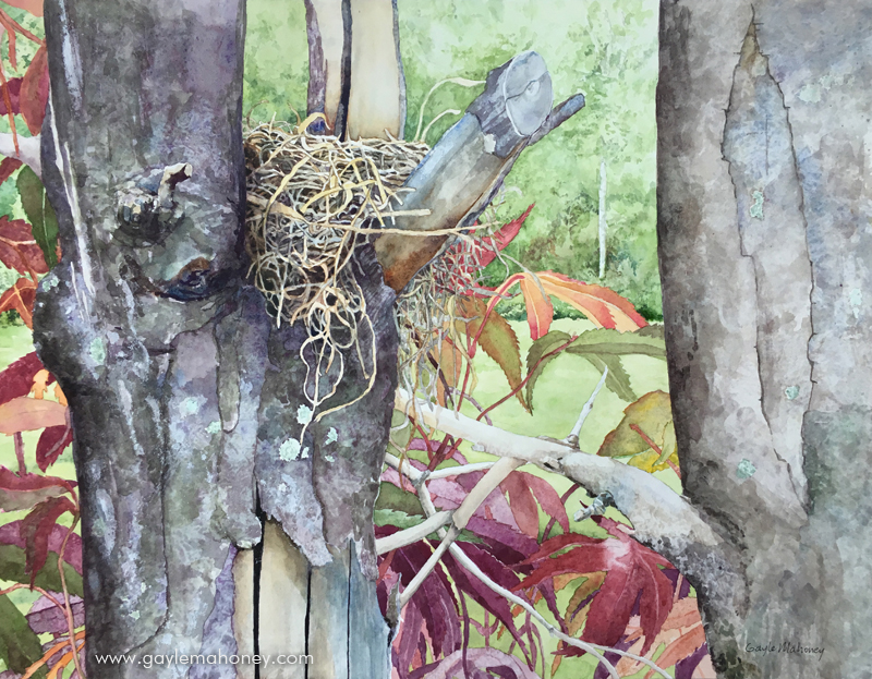 """Nest, 20x16"""", watercolor on hot press Arches paper"""